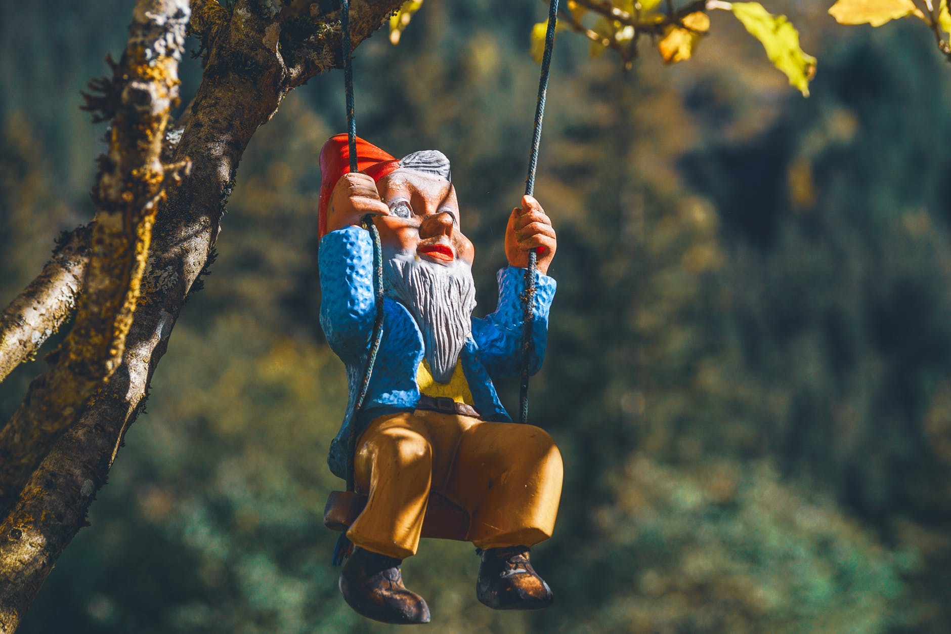 A photo of a garden gnome swinging in a tree.